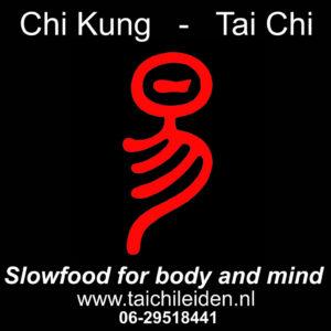 Tai Chi Leiden